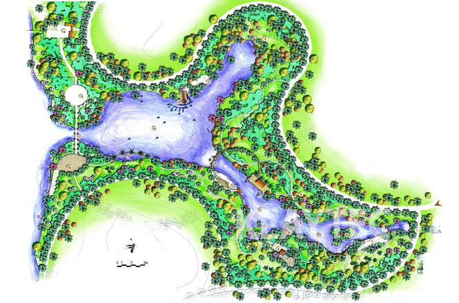 棕榈植物配置平面图